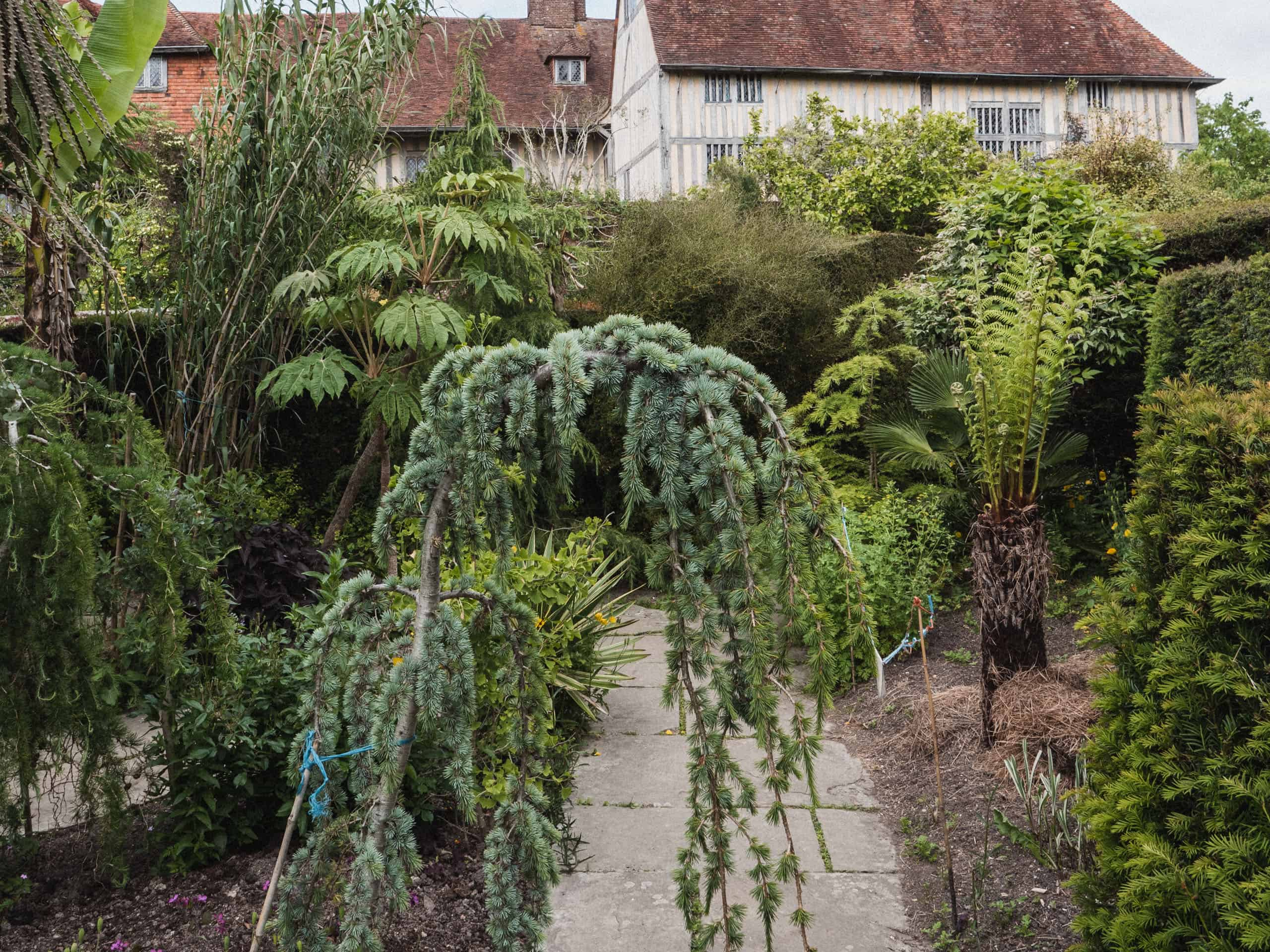 Great Dixter exotic garden